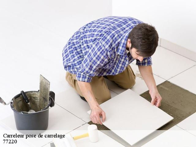 Pose de carrelage  77220